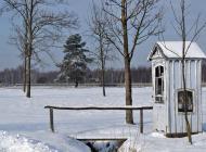 zima8.jpg